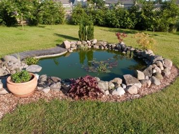 Year round pond care