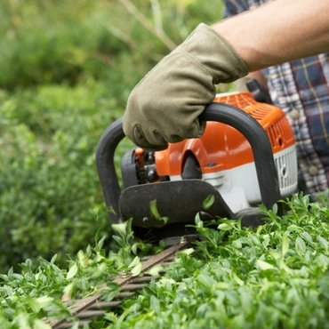 Keeping your hedge trimmer trim